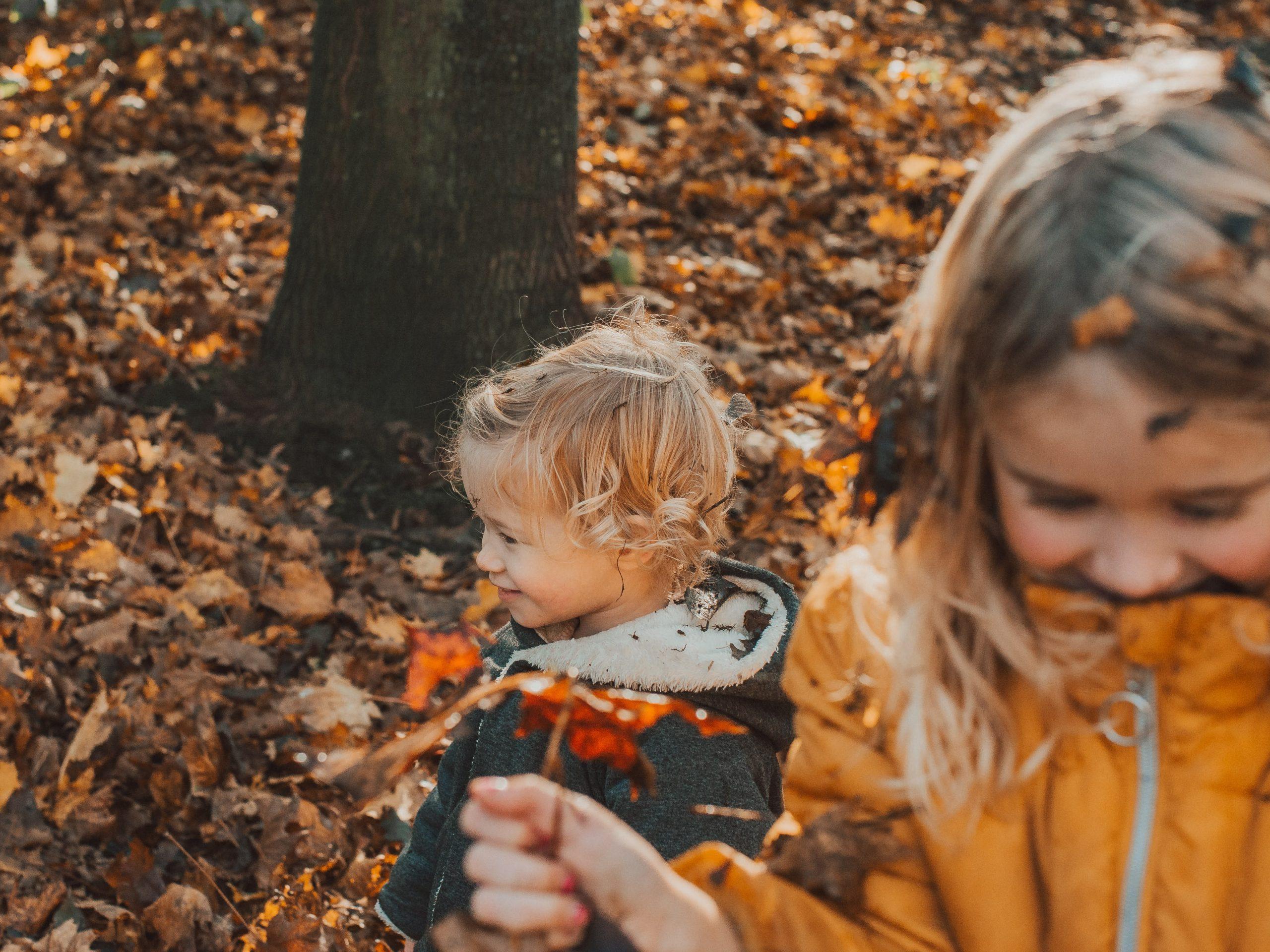 foto-ideeën voor de herfst